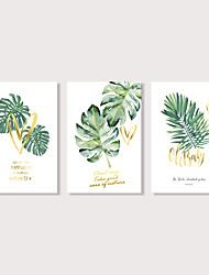 Недорогие -С картинкой Отпечатки на холсте - Натюрморт Цветочные мотивы / ботанический Modern 3 панели Репродукции