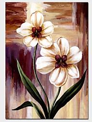 Недорогие -Hang-роспись маслом Ручная роспись - Цветочные мотивы / ботанический Классика Включите внутренний каркас
