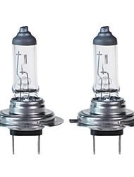 ราคาถูก -GMY® 2pcs P × 26d รถยนต์ Light Bulbs 100 W 2000 lm Halogen ไฟตัดหมอก / ไฟคาดหัว สำหรับ Volvo / Volkswagen / Toyota Jetta / Beetle