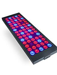 billige -1set 40 W 800 lm 75 LED perler Fullt Spektrum Lett installasjon For drivhushydroponisk Voksende lysarmatur 85-265 V Hjem / kontor Vegetabilsk drivhus