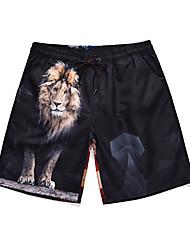 halpa -Miesten Urheilullinen / Perus Chinos housut / Shortsit Housut - Eläin / Leijona Musta