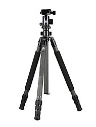 Недорогие -LITBest R1204+G10KX Назначение 168 cm На открытом воздухе Трипод Записывающая камера