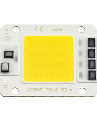 Недорогие -Zdm 1 шт. светодиодная микросхема 20 Вт 30 Вт 50 Вт ac220v теплый белый / холодный белый свет двигатель встроенный смарт-драйвер IC