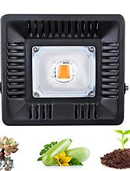 Недорогие -1 комплект 50 W 500 lm 1 Светодиодные бусины Полного спектра Для парниковых гидропоники Растущие светильники 220 V 110 V Овощеводство