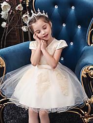 Недорогие -Принцесса До колена Детское праздничное платье - Тюль С короткими рукавами V-образный вырез с Бабочки / Бусины / Аппликации от LAN TING Express