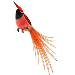 Kleurrijke Patroon van de Vogel Decoratieve Auto Sticker