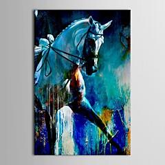 Kézzel festett Állat Egy elem Vászon Hang festett olajfestmény For lakberendezési