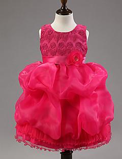 tanie Odzież dla dziewczynek-Sukienka Poliester Dziewczyny Kwiaty Wiosna Lato Jesień Bez rękawów Kwiatowy Elegancka odzież Kokarda Purple Czerwony Niebieski Różowy