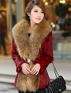 Women's Casual/Daily Simple Fall Winter Fur Coat,Solid V Neck Long Sleeve Long Raccoon Fur
