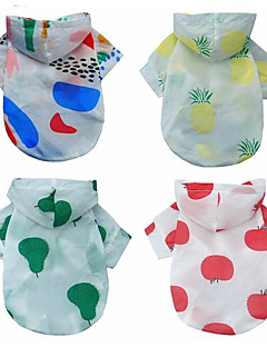 billiga Hundkläder-Hund / Katt Kappor / Huvtröjor Hundkläder Färgblock / Frukt Röd / Regnbåge Tyg Kostym För husdjur Dam Minimalistisk Stil / Mode
