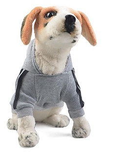 billiga Hundkläder-Hund / Katt Huvtröjor Hundkläder Enfärgad / Randig Röd / Blå / Rosa Cotton Kostym För husdjur Dam Sport och utomhus / Vanlig