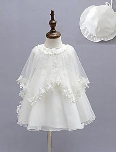 baratos Vestidos de Renda para Meninas-bebê Para Meninas Básico Sólido Manga Longa Algodão Vestido Branco / Bébé