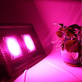 abordables Lampe de croissance LED-brelong 100w ultra-mince led lampe de croissance de plantes en pleine lumière 1 pc