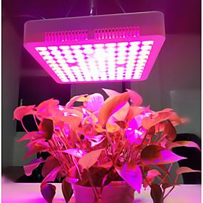 abordables Lampe de croissance LED-1pc 300 W 3800 lm 100 Perles LED Luminaire croissant 85-265 V