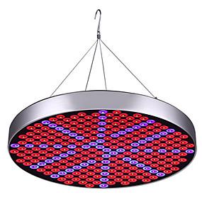 abordables Lampe de croissance LED-1 set 30 W 2400 lm 250 Perles LED Spectre complet Installation Facile Pour Greenhouse Hydroponic Luminaire croissant 85-265 V Maison / Bureau Serre de légumes