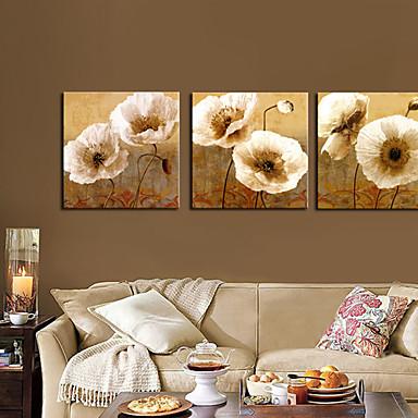 Kanvassarja Kasvitiede 3 paneeli Horizontal Painettu Wall Decor Kodinsisustus