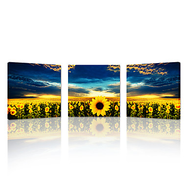 VISUAL STAR®Canvas Print Sunflowers 3 Panels Kitchen Wall Art Decor Picture Framed Artwork for Home Office Decoration