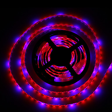 lm Wachsende Neonbeleuchtung 300 Leds SMD 5050 Wasserfest Blau Rot DC 12V