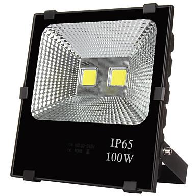 100W LED-projektører 10000 lm Varm hvid / Kold hvid Højeffekts-LED Vandtæt AC 220-240 / AC 110-130 V 1 stk