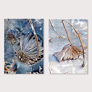 billige Trykk-Trykk Strukket Lerret Trykk - Fotografisk Blomstret / Botanisk Moderne Kunsttrykk