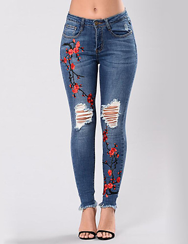 Women's Street chic Plus Size Skinny Jeans Pants - Floral / Embroidered Cut Out / Ripped / Denim / Sexy