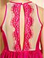 baratos Vestidos TS-TS Sexy Lace Skater Vestido