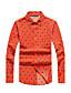 Pánské Potisk Denní Ležérní Vintage Košile-Jaro Podzim Polyester Košilový límec Dlouhý rukáv Střední