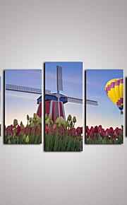 Fotografiskt Tryck Kanvas set Kanvas Tryck Landskap Fritid Botanisk Fotografisk Realism Resor Fem paneler Horisontell väggdekor