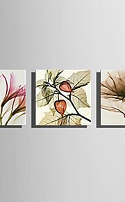 Trykk Valset lerretskunst - Blomster Moderne