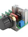 2000W justerbar 90 ~ 220V spänningsregulator för ljusreglering lätta lampor varvtalsstyrning (220V)