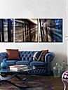 Impression sur Toile Ensembles de Toile Paysage Trois Panneaux Format Horizontal Imprime Decoration murale Decoration d\'interieur