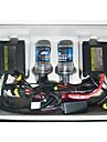 AOKIN 9005-DC 12V 35W HID xenon kit de conversie