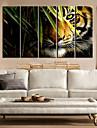 Stretched Canvas Art Landskap Animal kung av Forest Set av 5