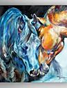 Pictat manual Animale Pătrat pânză Hang-pictate pictură în ulei Pagina de decorare Un Panou