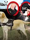 Hund Selar Justerbara / Infällbar Vadderad Nylon Svart Röd Kamoflagefärg