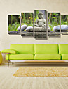 Peisaj Oameni Fotografic Modern, Cinci Panouri Orizontal Imprimeu Decor de perete Pagina de decorare