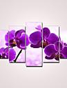 Imprimeu pânză întins Florale Modern, Cinci Panouri pânză Orizontal Imprimeu Decor de perete Pagina de decorare