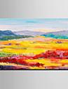 Pictat manual Peisaj Orizontal, Modern Stil European pânză Hang-pictate pictură în ulei Pagina de decorare Un Panou