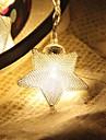 10-a condus 1.5m stea lumina impermeabil plug vid în aer liber de decorare de vacanță a condus lumina șir