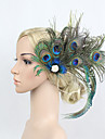 Štras / Peří / Slitina Květiny / Doplňky do vlasů / Spona do vlasů s Květiny 1ks Zvláštní příležitosti Přílba