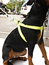 Pisici Câine Hamuri Lese Reflexiv Portabil Respirabil Siguranță Ajustabile Mată Nailon Portocaliu Galben Trandafiriu Verde