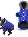 Hund Kappor Huvtröjor Pyjamas Dunjackor Hundkläder Enfärgad Grå Purpur Blå Rosa Cotton Kostym För husdjur Herr Dam Ledigt/vardag