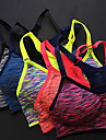 Women\'s Seamless Bra Top Blue Pink Violet Sports Spandex Sports Bra Zumba Running Fitness Activewear Breathable 3D Pad Quick Dry Stretchy