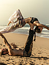 Dames Harem Yoga broek Pauw Blauw Fuschia Donkergroen Sport Print Katoen Broeken / Regenbroek / Overbroek Knickerbockers (dames) Kleding Onderlichaam Zumba Dans Fitness Sportkleding Lichtgewicht